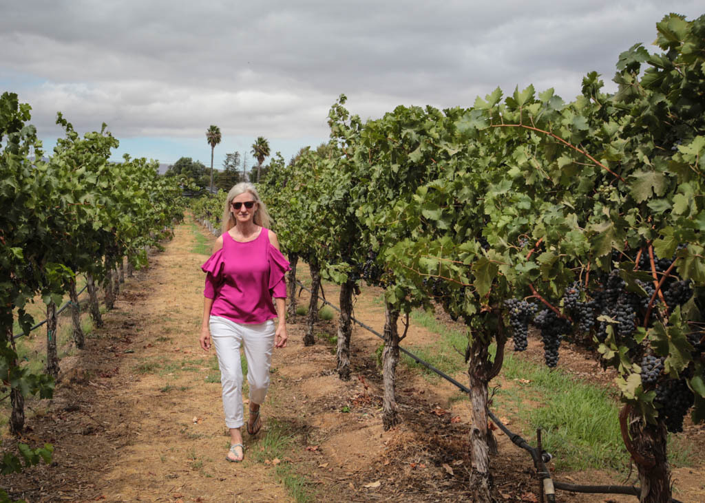 The writer walking in a vineyard in Livermore.