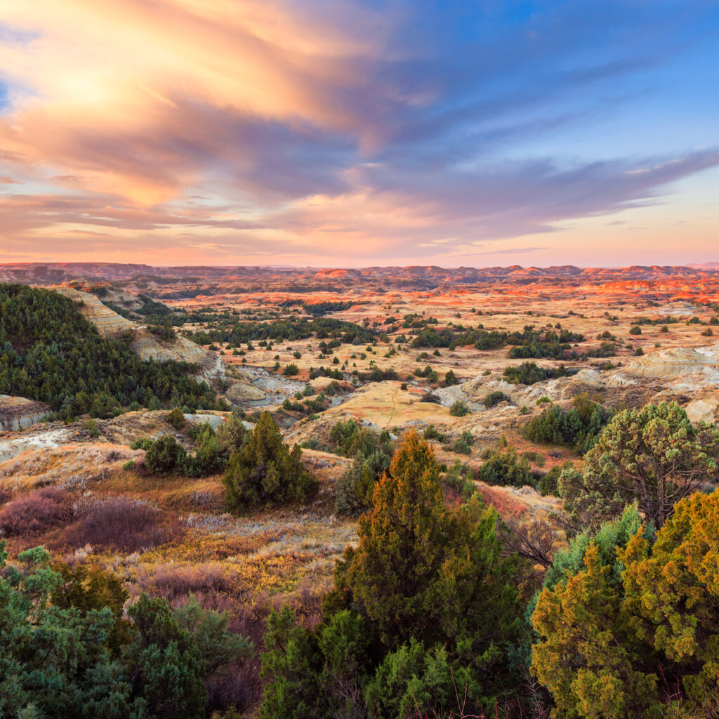 Theodore Roosevelt National Park.