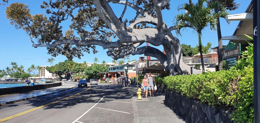 Tourists enjoying Alii Drive in Kailua-Kona, Hawaii.