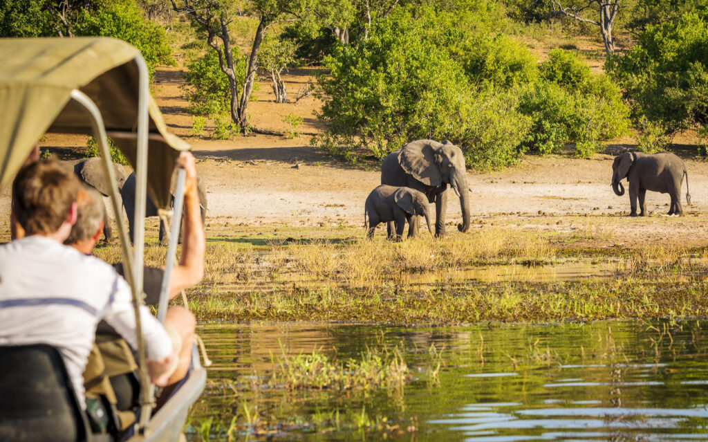 Tourists on a safari in Chobe National Park.