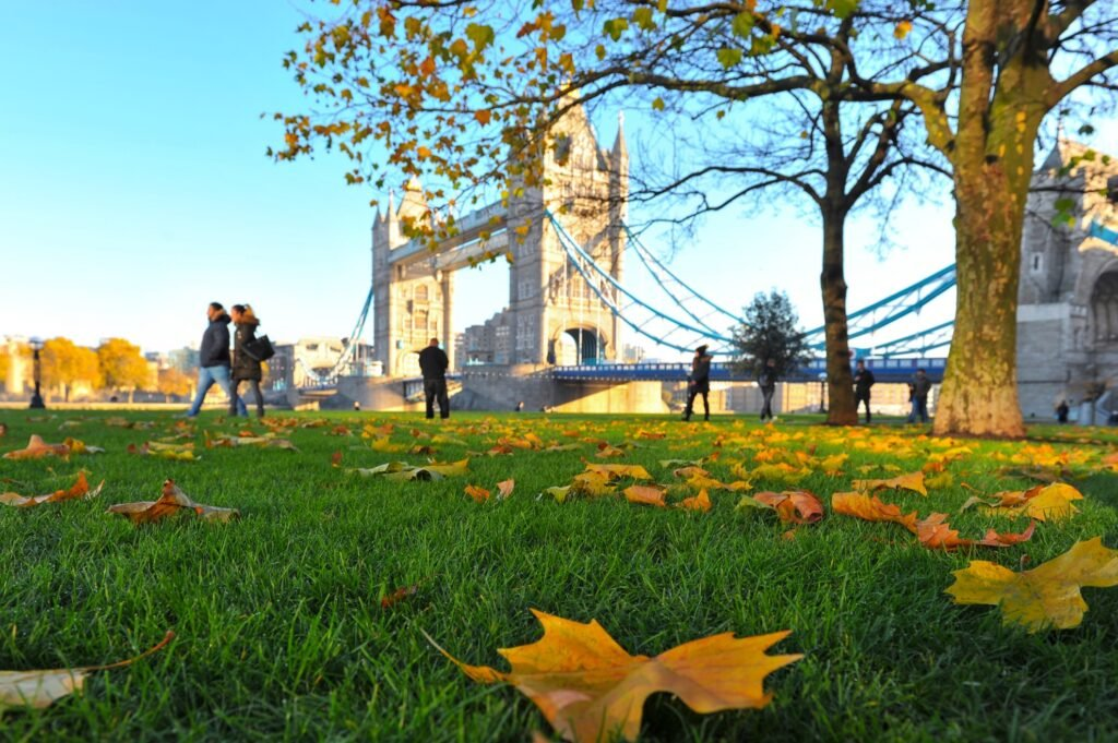 Tower Bridge in London during the fall.