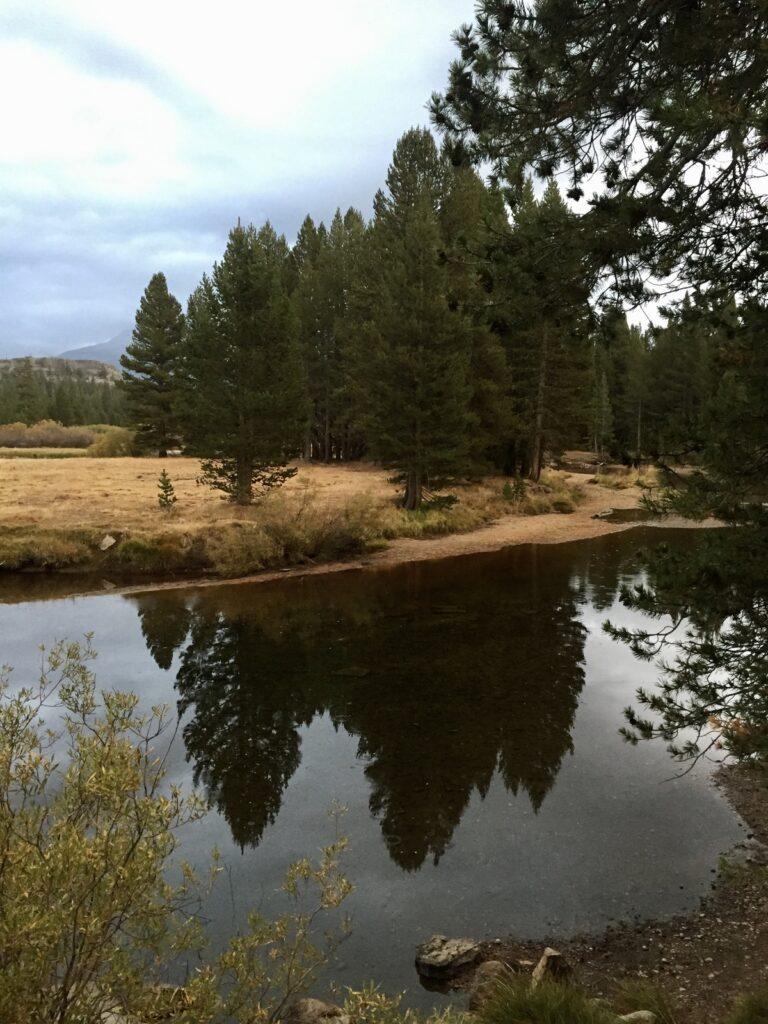 Tuolumne River in Yosemite National Park.