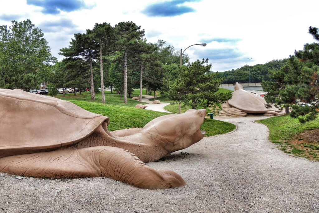 Turtle Playground in Forest Park.