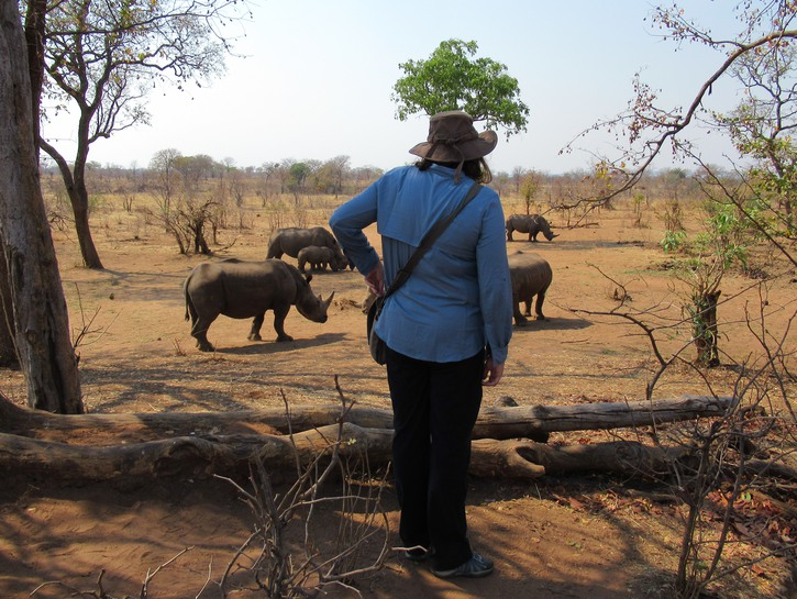 Vanessa gazes out at the wild rhinoceros