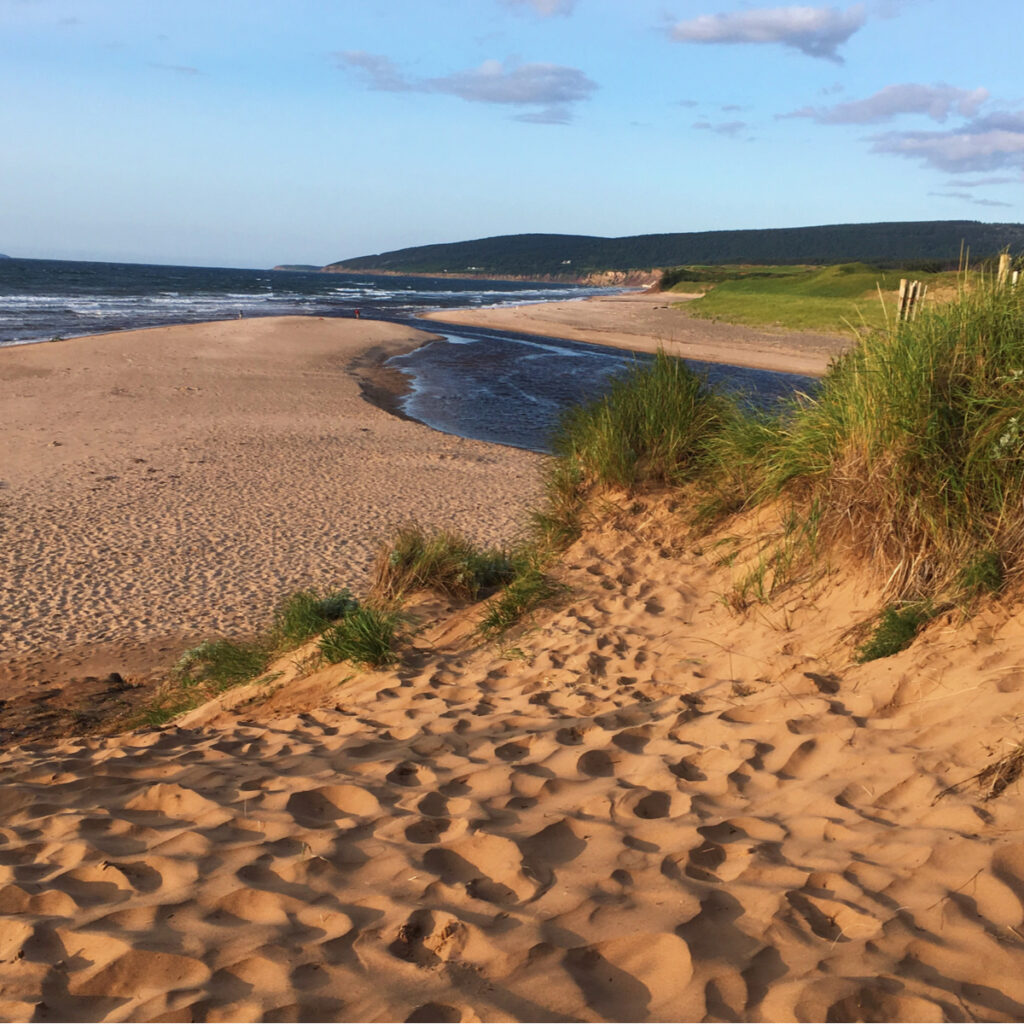 View along the coast of Cabot Links.