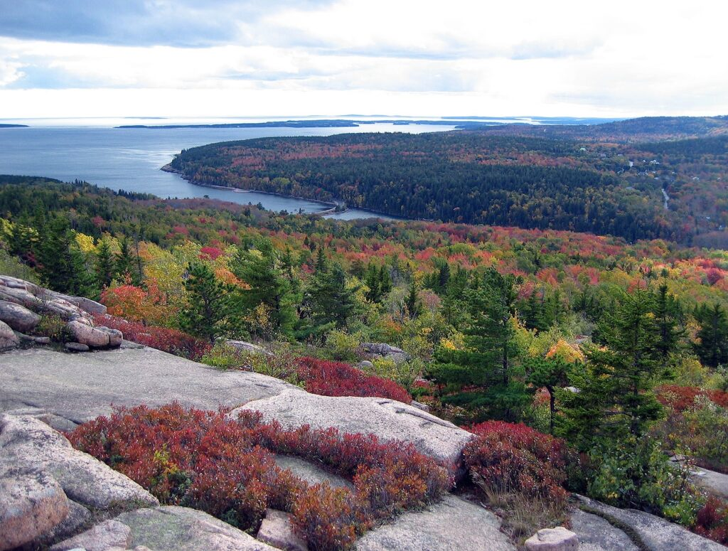 View from a granite lookout over autumn forest, Maine's Acadia National Park