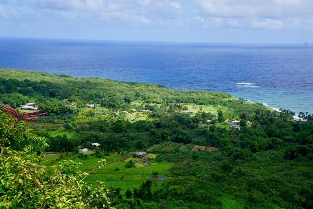 View from an overlook on the Road to Hana.