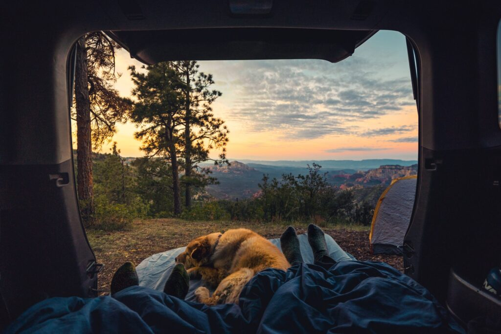 view from camping in an RV