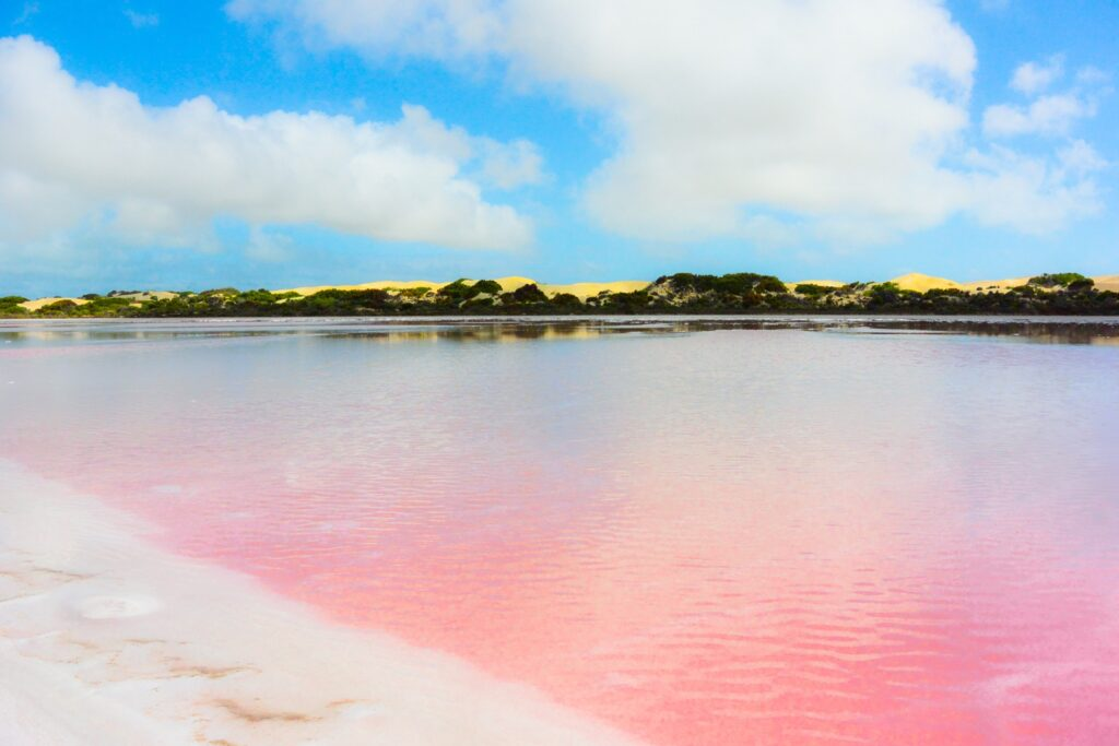 View from the shores of Lake Hillier.