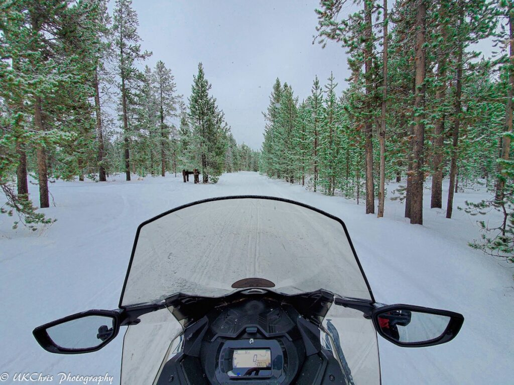 View from the snowmobile.