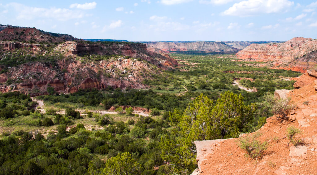 View from the top of Palo Duro Canyon.