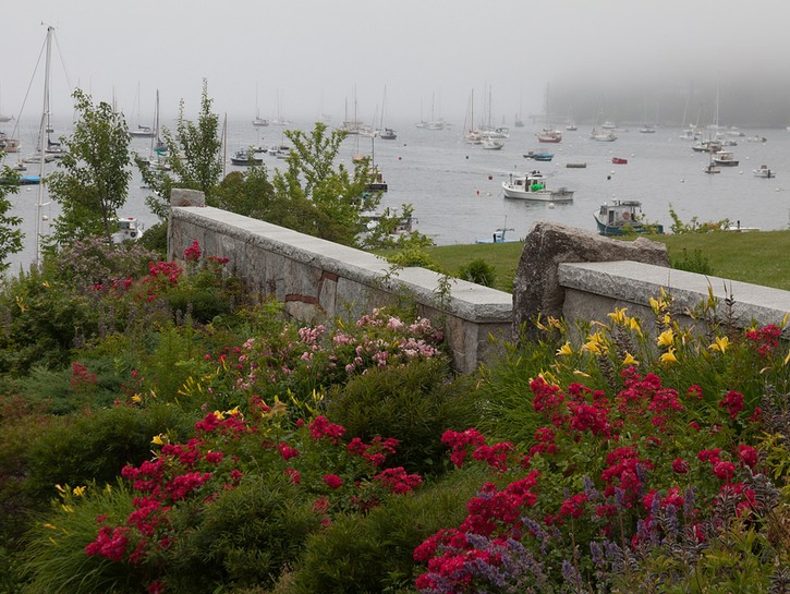 View of Rockport harbor with fog