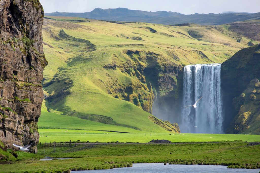 View of Skogafoss waterfall in Iceland.