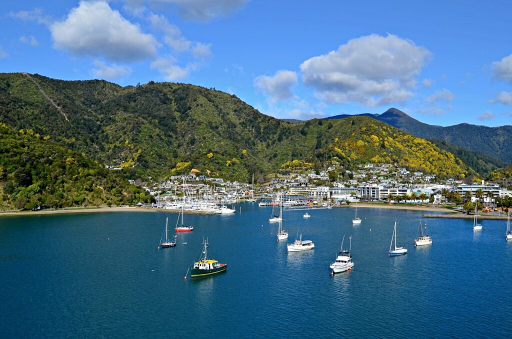 View of the Picton harbor in New Zealand.