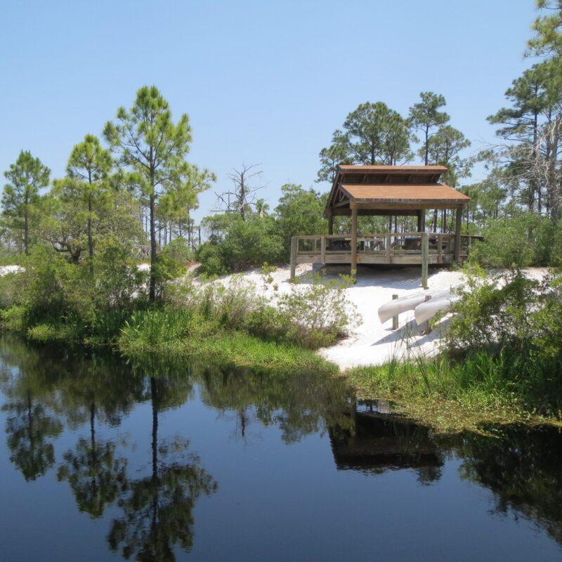 Views along a hike on the Gulf Coast.