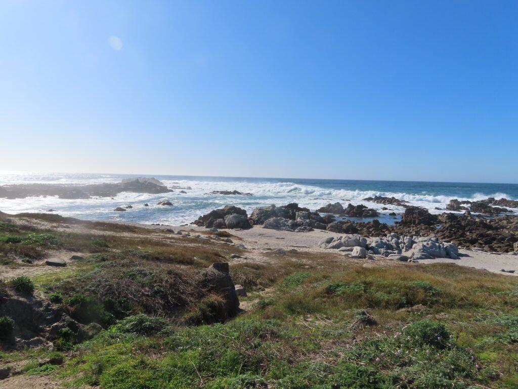 Views along the coast of Monterey.