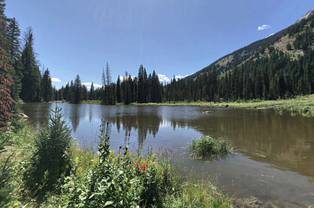 Views along the Moose Ponds Trail in Wyoming.
