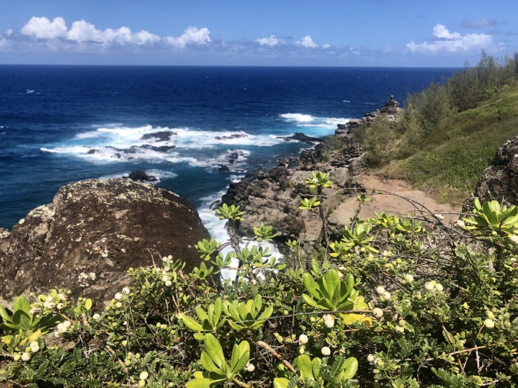 Views along the north coast of Maui.