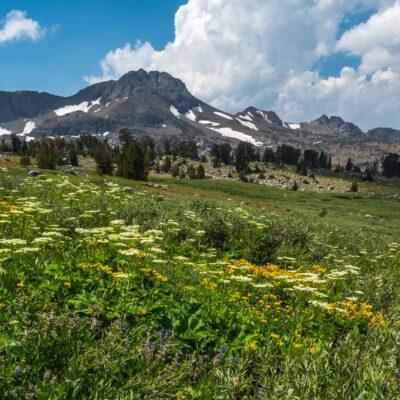 Views along the trail in Carson Pass, California.