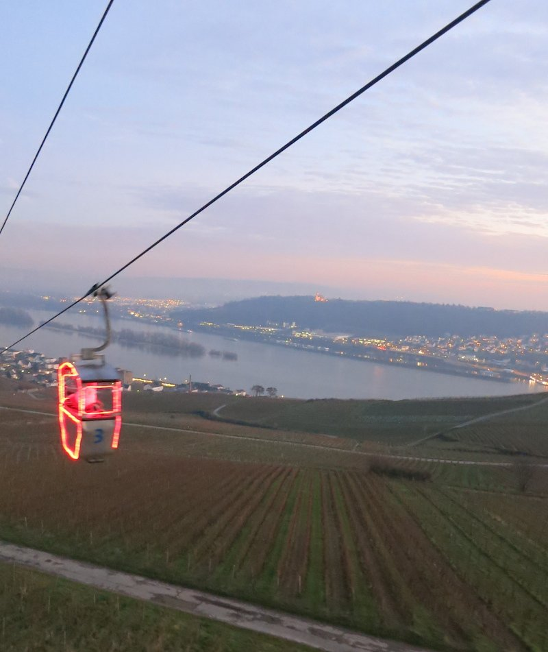 Views from a cable car in Rudesheim.