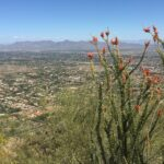 Views from Camelback Mountain in Phoenix, Arizona.