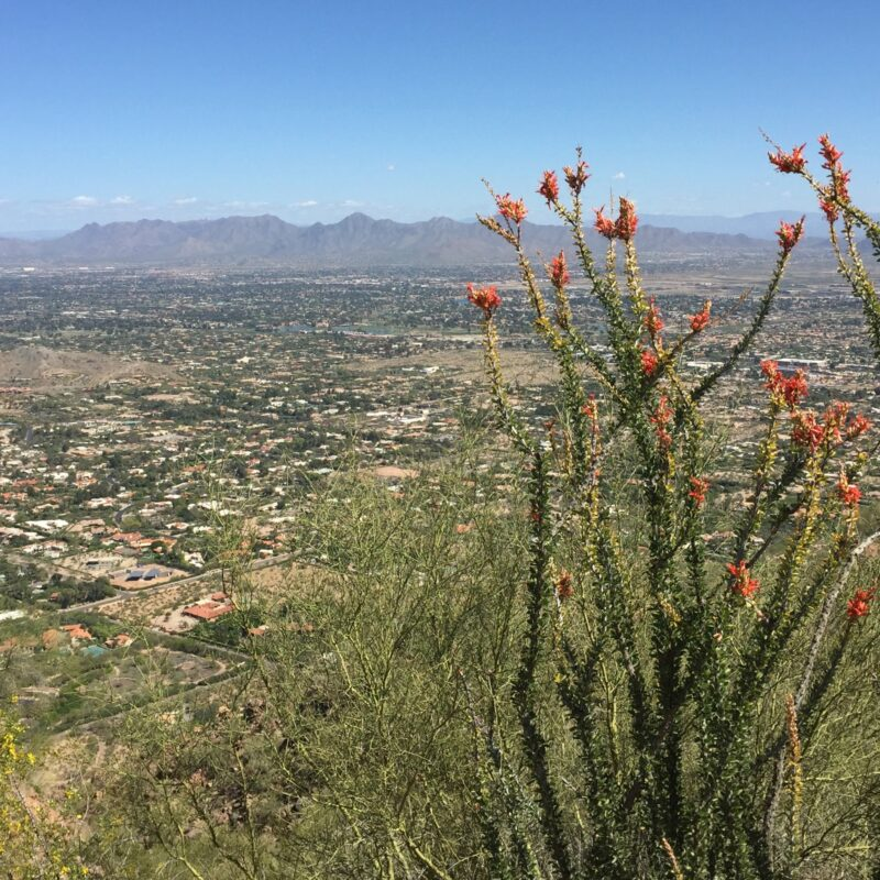 Views from Camelback Mountain in Phoenix, Arizona.