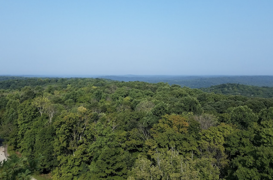 Views from Indiana's O'Bannon Woods State Park.