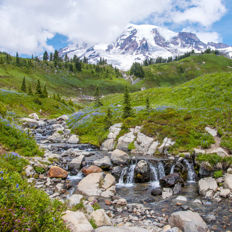Views from the Skyline Trail in Mount Rainier National Park.