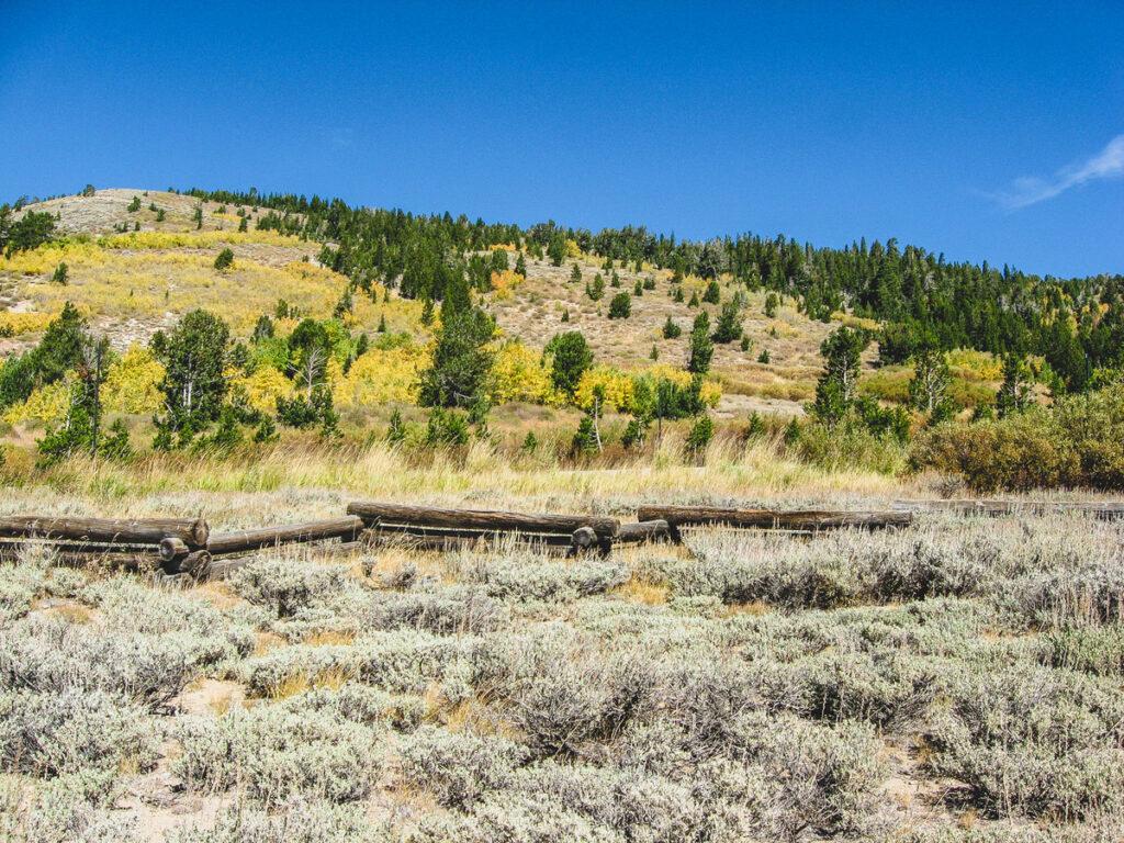Views from the Tahoe Meadows Interpretive Loop.