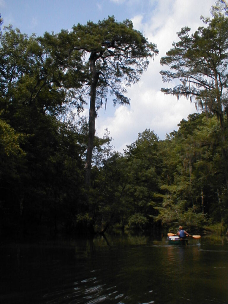 Views of Alabama's Scenic River Trail.