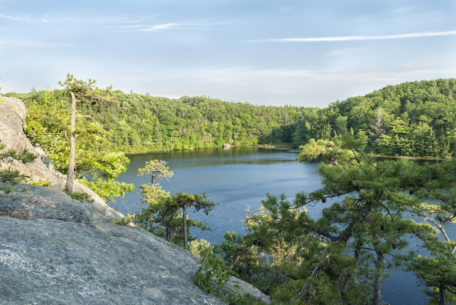 Views of Long Pond in Rockville Management Area.