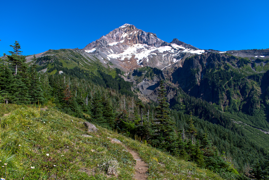 Views of Mount Hood from the Timberline Trail in Oregon.
