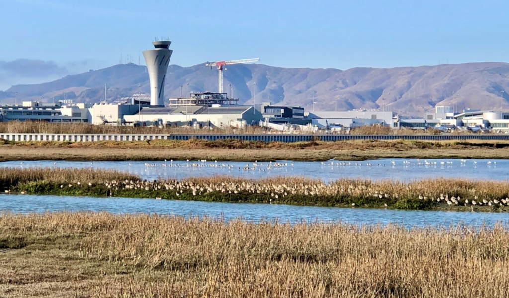 Views of the San Francisco International Airport from Bayfront Park.