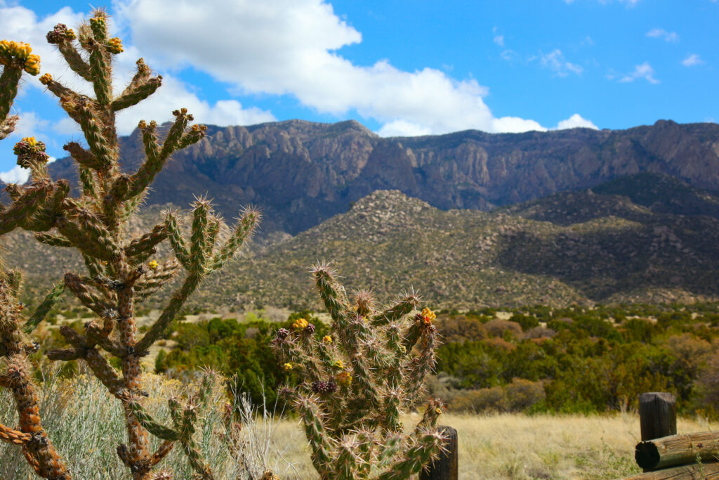 Views of the Sandia Mountain Wilderness in New Mexico.