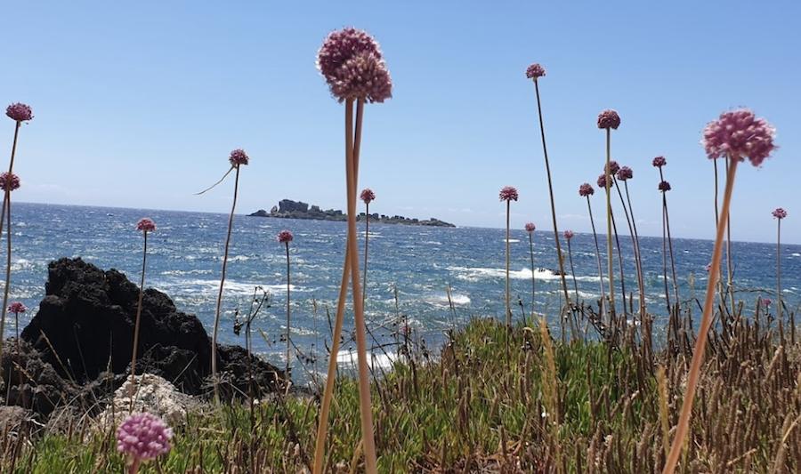 Views of the tiny island of Trachia from Mathraki, Greece.
