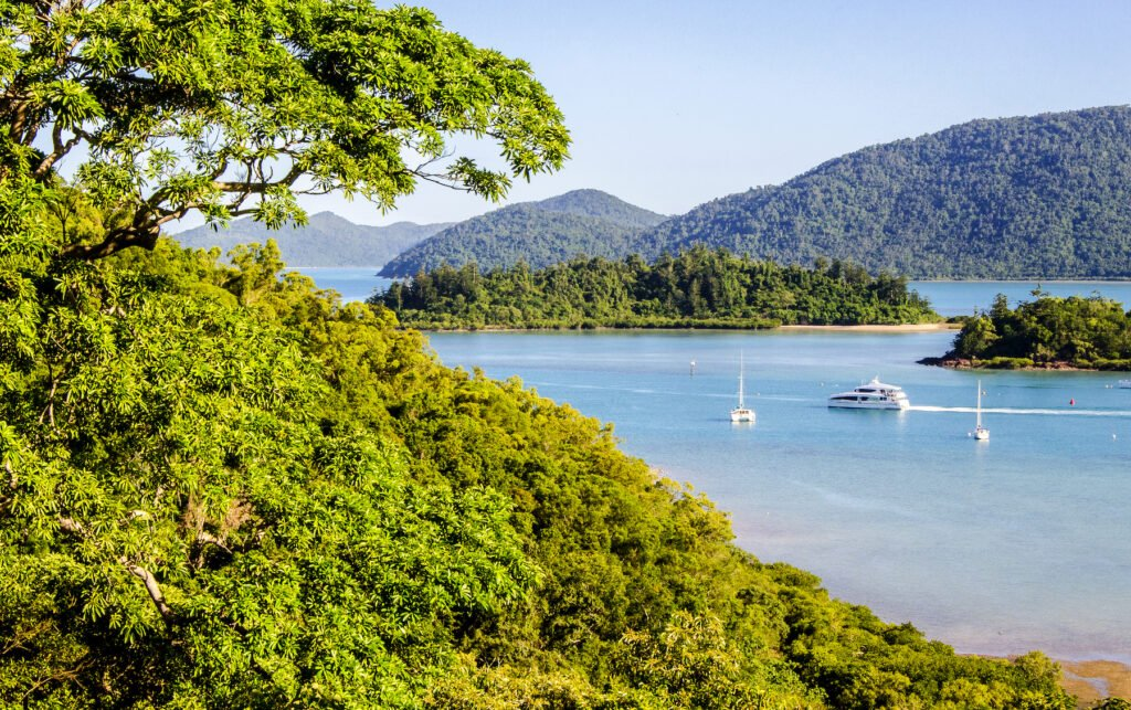Views of the Whitsunday Islands from Conway National Park.