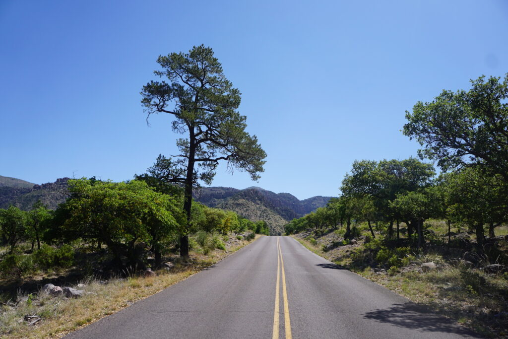 Views on the way to Chiricahua National Monument.