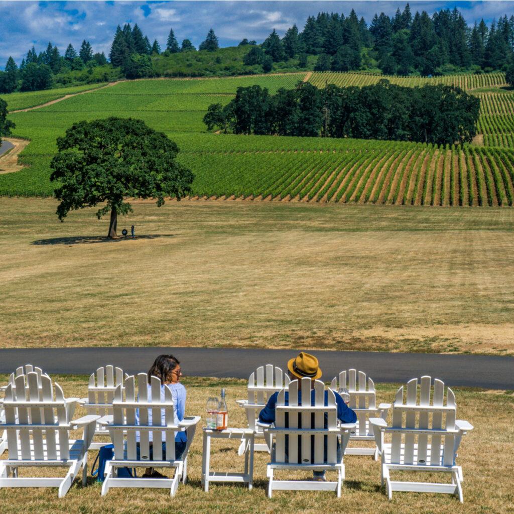 Vineyard in Willamette Valley, Oregon.
