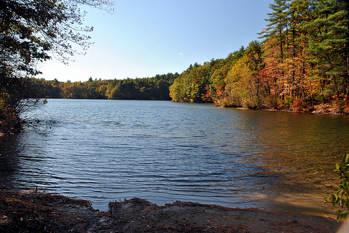 Walden Pond lake in Concord