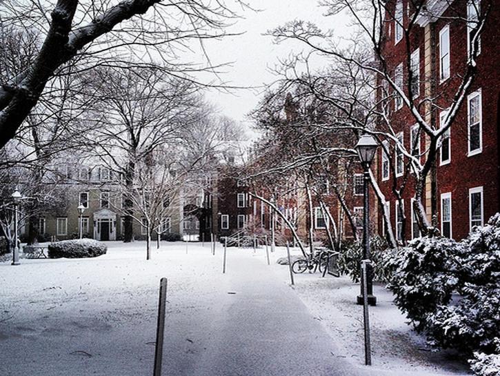 Walkway on Harvard campus in the winter