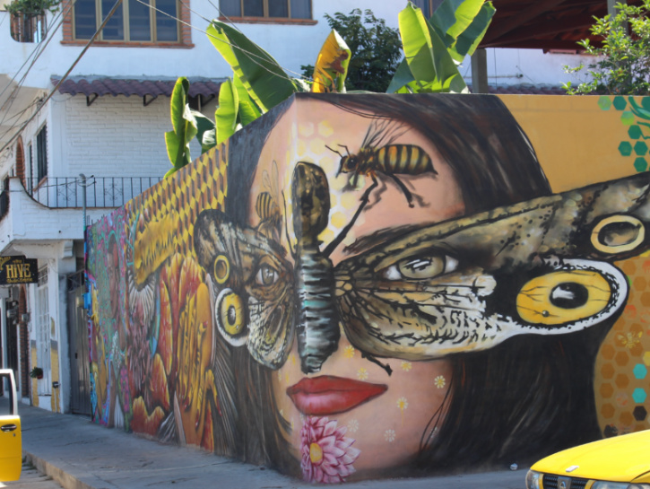 Wall mural of woman with butterfly over her eyes, Puerto Vallarta, Mexico.