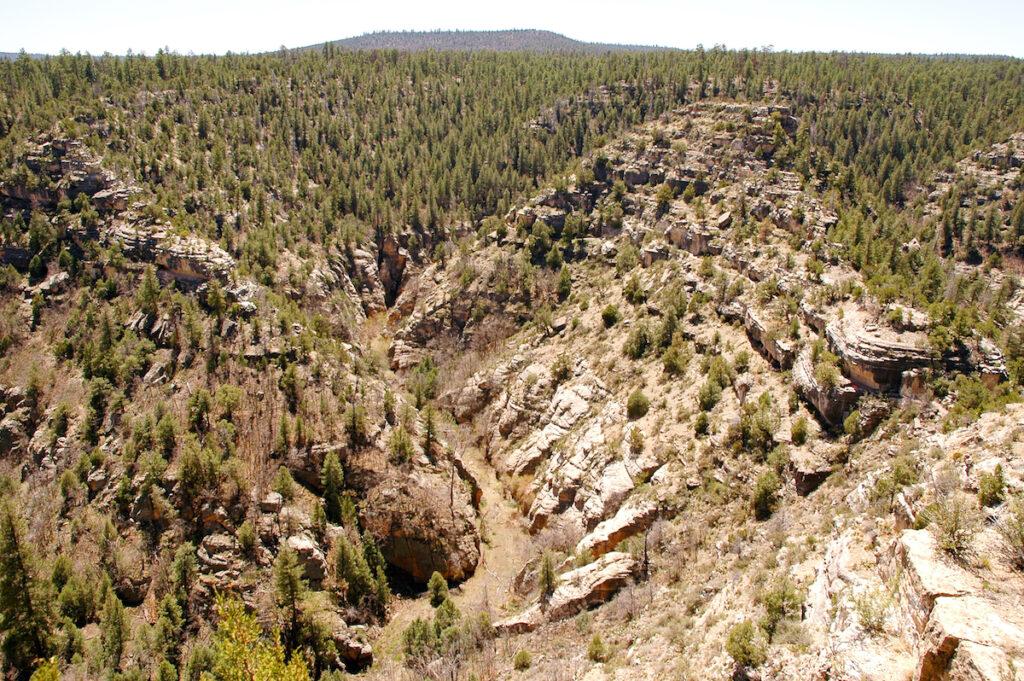 Walnut Canyon in Arizona.