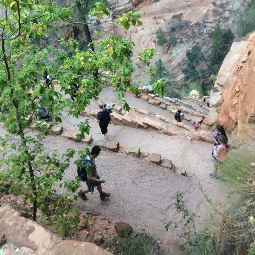 Walter's Wiggles on Angel's Landing in Zion National Park.