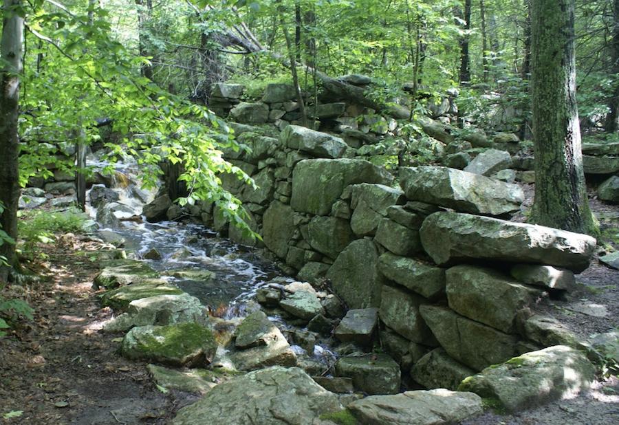 Weetamoo Woods Trail in Tiverton, Rhode Island.