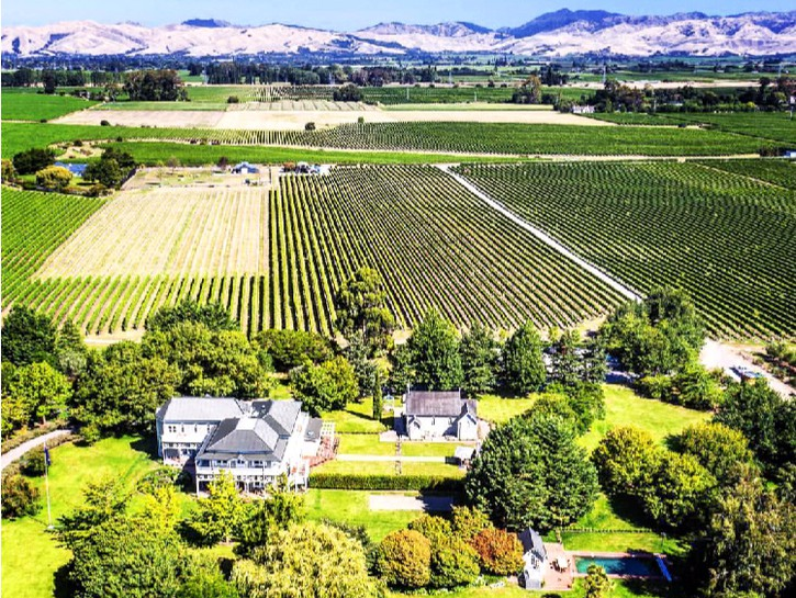 what are favorite places to say on south island new zealand