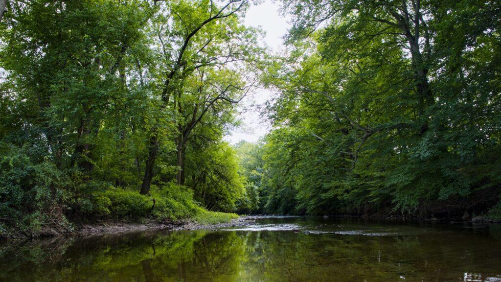 White Clay Creek State Park in Delaware.