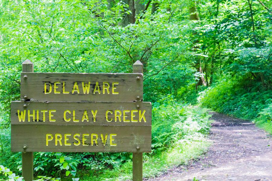 White Clay Creek State Park in Newark, Delaware.