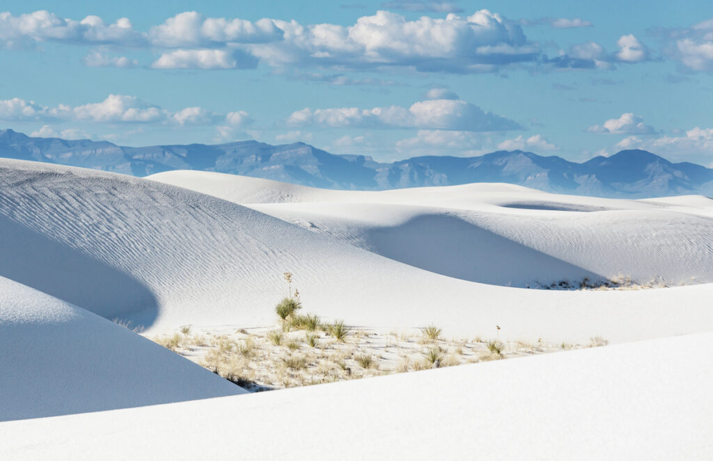 White Sands National Park in New Mexico.