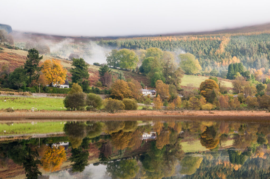 Wicklow Mountains National Park in autumn.