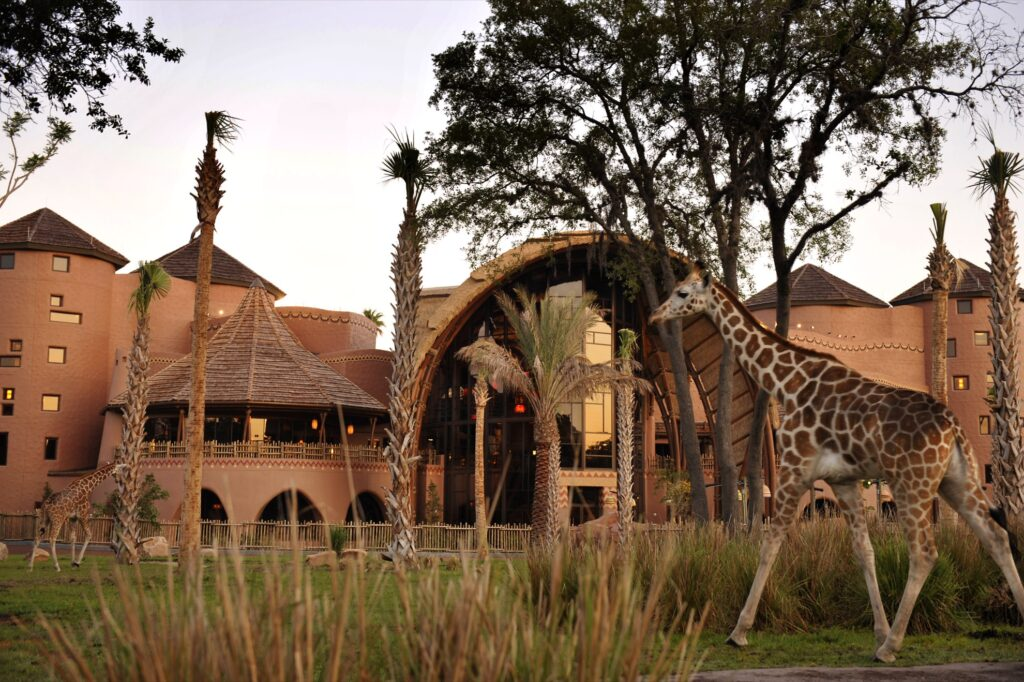 Wildlife at Disney's Animal Kingdom Lodge.